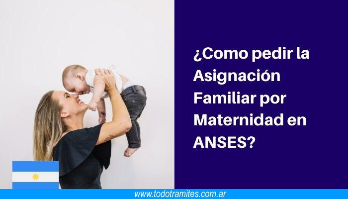 Como pedir la Asignación Familiar por Maternidad en ANSES