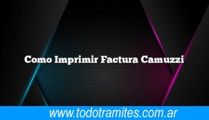 Como Imprimir Factura Camuzzi